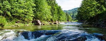 Nature - Cascade River
