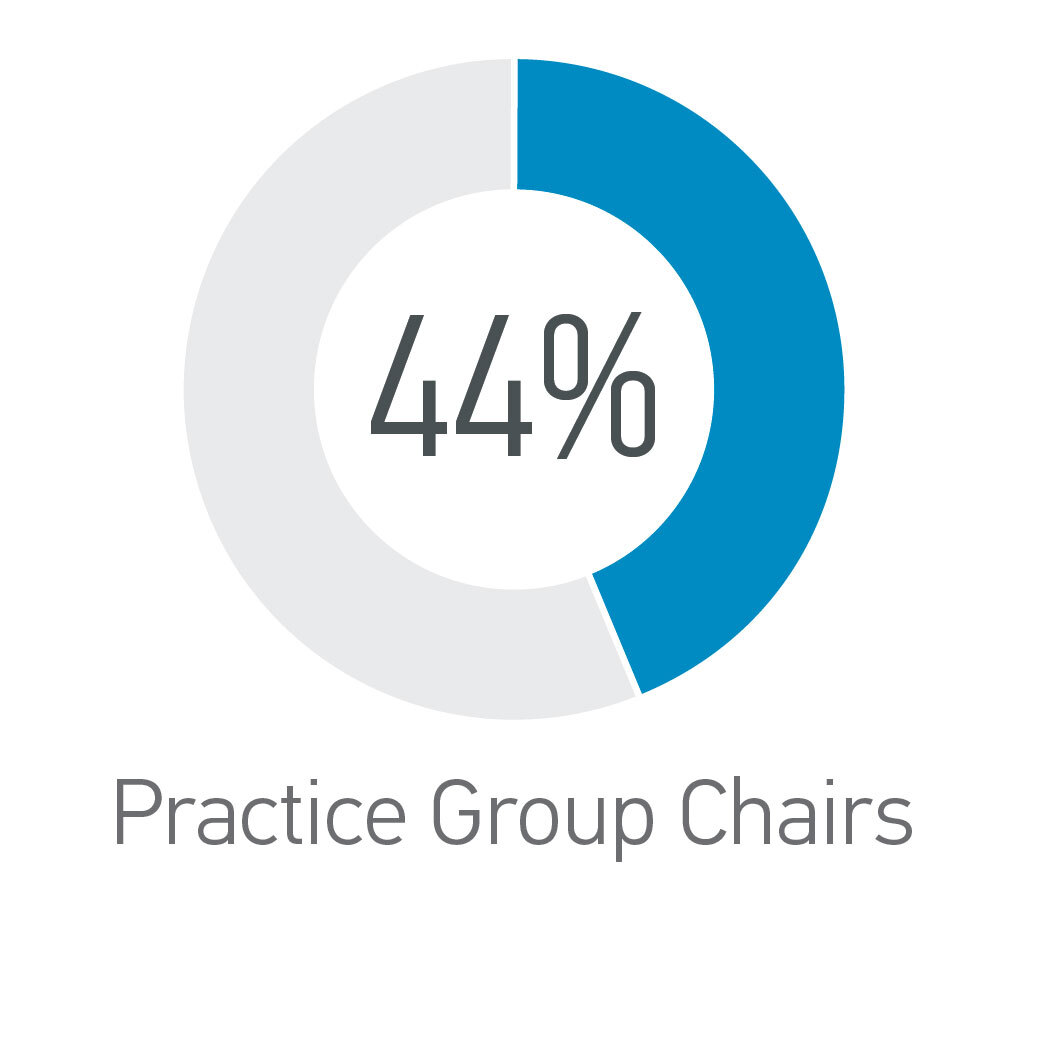 Practice Group Chairs - 44% Women